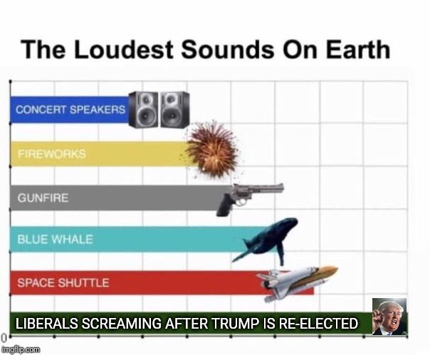 Cries of liberals will be deafening on election night! |  LIBERALS SCREAMING AFTER TRUMP IS RE-ELECTED | image tagged in the loudest sounds on earth,president trump,election | made w/ Imgflip meme maker
