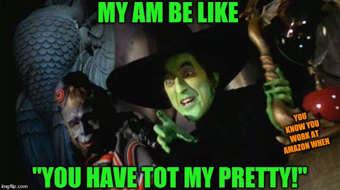 "MY AM BE LIKE ""YOU HAVE TOT MY PRETTY!"" YOU KNOW YOU WORK AT AMAZON WHEN 