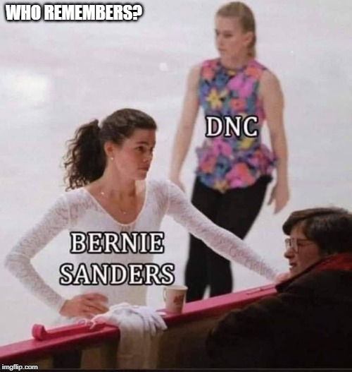 hit job |  WHO REMEMBERS? | image tagged in tonya harding,nancy kerrigan,hit job,sanders,dnc | made w/ Imgflip meme maker