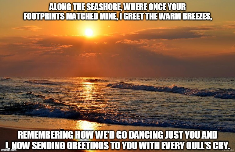 Sending Greetings |  ALONG THE SEASHORE, WHERE ONCE YOUR FOOTPRINTS MATCHED MINE, I GREET THE WARM BREEZES, REMEMBERING HOW WE'D GO DANCING JUST YOU AND I, NOW SENDING GREETINGS TO YOU WITH EVERY GULL'S CRY. | image tagged in seashore,footprints,sending greetings,damcing,gulls | made w/ Imgflip meme maker