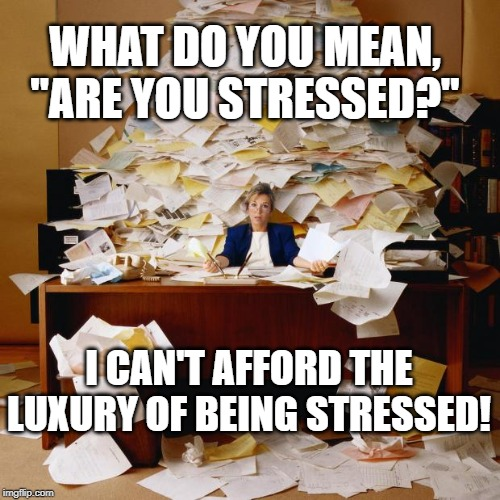 "Busy |  WHAT DO YOU MEAN, ""ARE YOU STRESSED?""; I CAN'T AFFORD THE LUXURY OF BEING STRESSED! 