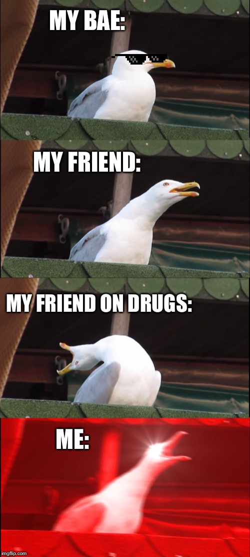 Inhaling Seagull |  MY BAE:; MY FRIEND:; MY FRIEND ON DRUGS:; ME: | image tagged in memes,inhaling seagull | made w/ Imgflip meme maker