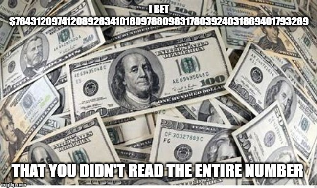 wanna bet | I BET $7843120974120892834101809788098317803924031869401793289 THAT YOU DIDN'T READ THE ENTIRE NUMBER | image tagged in money,meme,idk | made w/ Imgflip meme maker