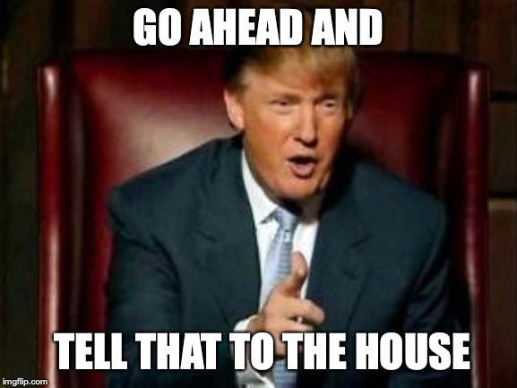 GO AHEAD AND TELL THAT TO THE HOUSE | image tagged in donald trump | made w/ Imgflip meme maker