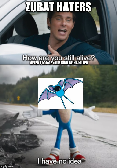 Sonic : How are you still alive |  ZUBAT HATERS; AFTER 1,000 OF YOUR KIND BEING KILLED | image tagged in sonic  how are you still alive | made w/ Imgflip meme maker