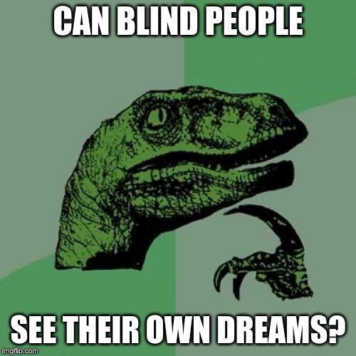 Philosoraptor |  CAN BLIND PEOPLE; SEE THEIR OWN DREAMS? | image tagged in memes,philosoraptor | made w/ Imgflip meme maker