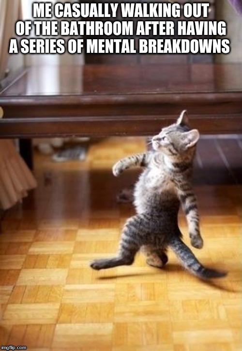 Cool Cat Stroll Meme |  ME CASUALLY WALKING OUT OF THE BATHROOM AFTER HAVING A SERIES OF MENTAL BREAKDOWNS | image tagged in memes,cool cat stroll | made w/ Imgflip meme maker