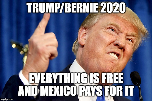 TRUMP/BERNIE 2020 EVERYTHING IS FREE AND MEXICO PAYS FOR IT | image tagged in donald trump | made w/ Imgflip meme maker
