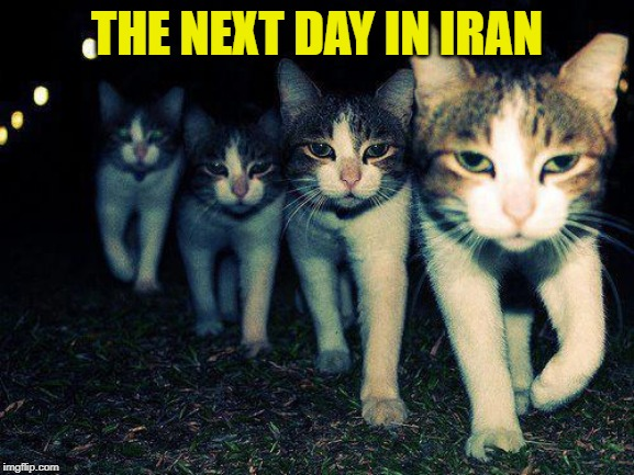 THE NEXT DAY IN IRAN | image tagged in memes,wrong neighboorhood cats | made w/ Imgflip meme maker