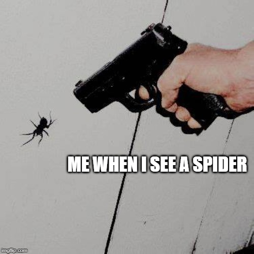 Me when i see a spider | ME WHEN I SEE A SPIDER | image tagged in spider | made w/ Imgflip meme maker