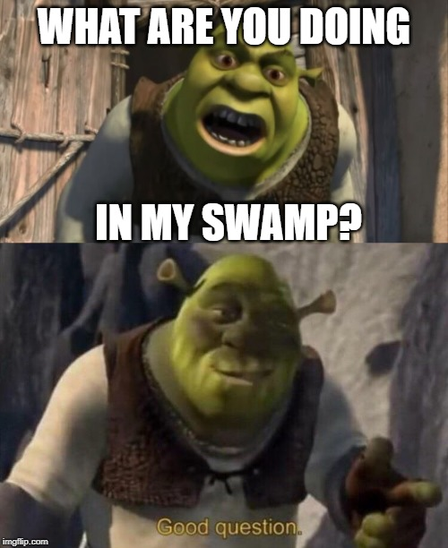 WHAT ARE YOU DOING; IN MY SWAMP? | image tagged in shrek what are you doing in my swamp,shrek good question | made w/ Imgflip meme maker