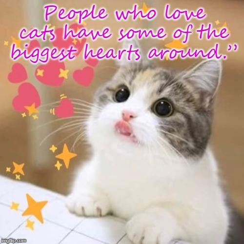 People who love cats |  People who love cats have some of the biggest hearts around."