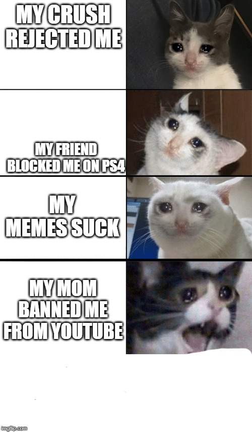 MY CRUSH REJECTED ME; MY FRIEND BLOCKED ME ON PS4; MY MEMES SUCK; MY MOM BANNED ME FROM YOUTUBE | image tagged in expanding brain,memes,dank memes,cute kittens | made w/ Imgflip meme maker