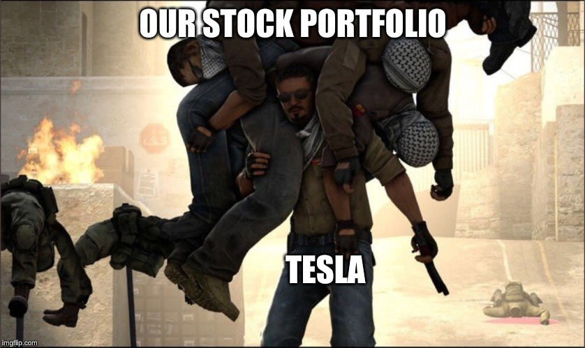 rough |  OUR STOCK PORTFOLIO; TESLA | image tagged in stocks | made w/ Imgflip meme maker
