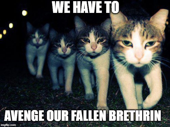 Wrong Neighboorhood Cats | WE HAVE TO AVENGE OUR FALLEN BRETHREN | image tagged in memes,wrong neighboorhood cats | made w/ Imgflip meme maker