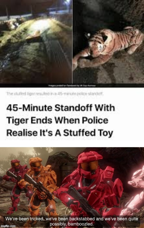 So, what happens if a kid drops their teddy? | image tagged in we've been tricked,funny,memes,bamboozled | made w/ Imgflip meme maker