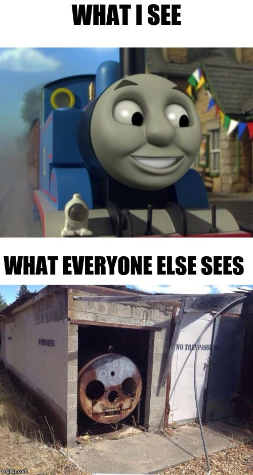 WHAT I SEE WHAT EVERYONE ELSE SEES | image tagged in thomas the tank engine reaction 1,thomas the tank engine | made w/ Imgflip meme maker