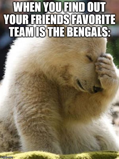 Facepalm Bear |  WHEN YOU FIND OUT YOUR FRIENDS FAVORITE TEAM IS THE BENGALS: | image tagged in memes,facepalm bear | made w/ Imgflip meme maker