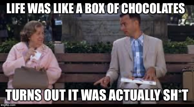 forrest gump box of chocolates |  LIFE WAS LIKE A BOX OF CHOCOLATES; TURNS OUT IT WAS ACTUALLY SH*T | image tagged in forrest gump box of chocolates | made w/ Imgflip meme maker