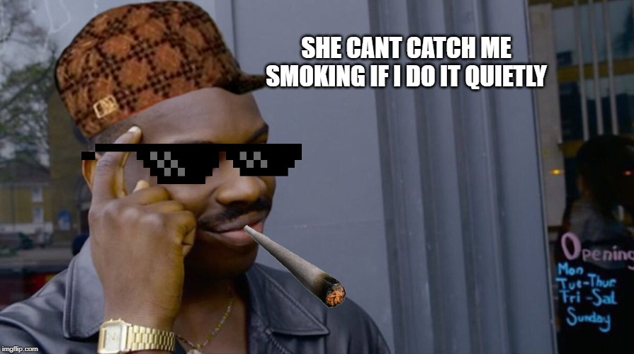 SHE CANT CATCH ME SMOKING IF I DO IT QUIETLY | image tagged in memes,gifs,pie charts,ha ha tags go brr | made w/ Imgflip meme maker