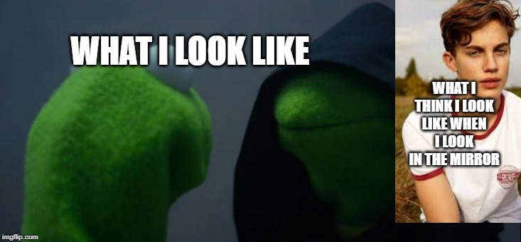 Evil Kermit | WHAT I THINK I LOOK LIKE WHEN I LOOK IN THE MIRROR WHAT I LOOK LIKE | image tagged in memes,evil kermit | made w/ Imgflip meme maker