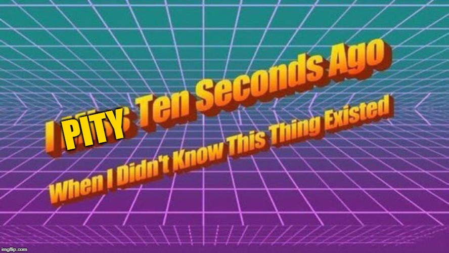 I miss ten seconds ago | PITY | image tagged in i miss ten seconds ago | made w/ Imgflip meme maker