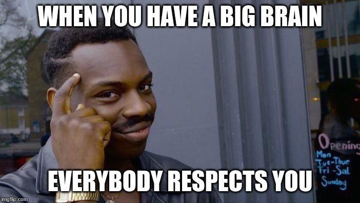 Yes sir |  WHEN YOU HAVE A BIG BRAIN; EVERYBODY RESPECTS YOU | image tagged in memes,roll safe think about it | made w/ Imgflip meme maker