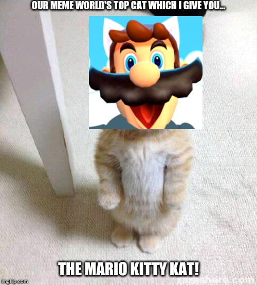 Mario da Kitty Kat meme |  OUR MEME WORLD'S TOP CAT WHICH I GIVE YOU... THE MARIO KITTY KAT! | image tagged in memes,cute cat,super mario bros,funny memes | made w/ Imgflip meme maker