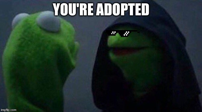 kermit me to me |  YOU'RE ADOPTED | image tagged in kermit me to me | made w/ Imgflip meme maker