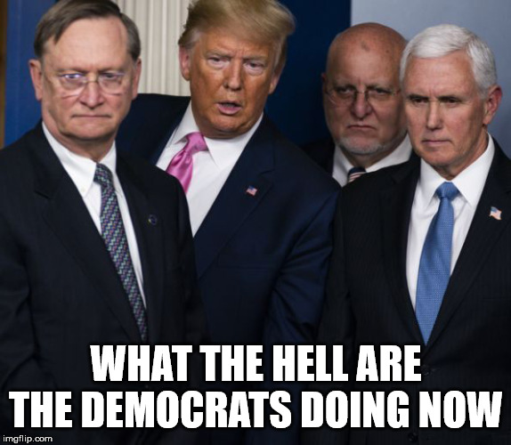 Falling apart, and electing anti-American candidates |  WHAT THE HELL ARE THE DEMOCRATS DOING NOW | image tagged in democrats,trump 2020,mike pence,gop | made w/ Imgflip meme maker