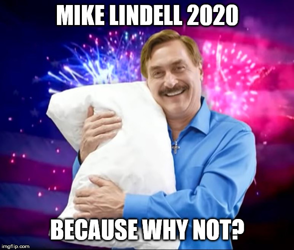 Mike Lindell 2020 |  MIKE LINDELL 2020; BECAUSE WHY NOT? | image tagged in mike lindell,election,funny | made w/ Imgflip meme maker
