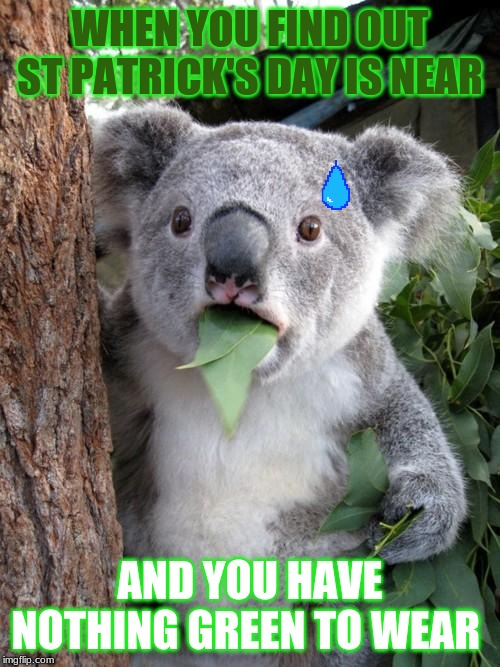Surprised Koala Meme |  WHEN YOU FIND OUT ST PATRICK'S DAY IS NEAR; AND YOU HAVE NOTHING GREEN TO WEAR | image tagged in memes,surprised koala | made w/ Imgflip meme maker