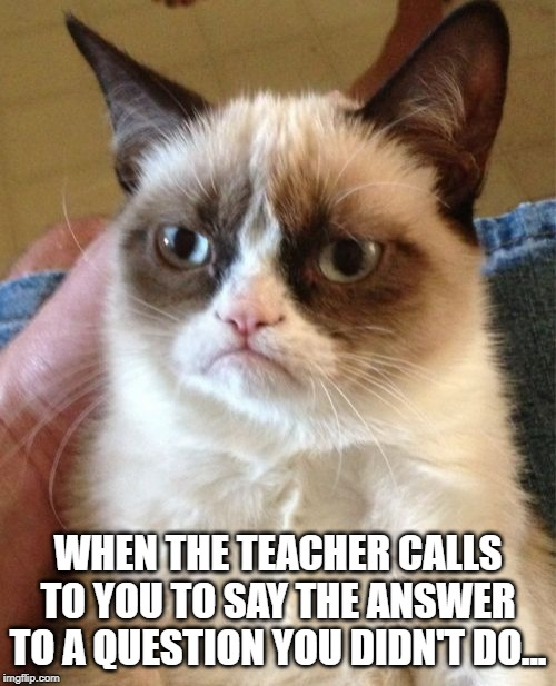 Grumpy Cat |  WHEN THE TEACHER CALLS TO YOU TO SAY THE ANSWER TO A QUESTION YOU DIDN'T DO... | image tagged in memes,grumpy cat | made w/ Imgflip meme maker