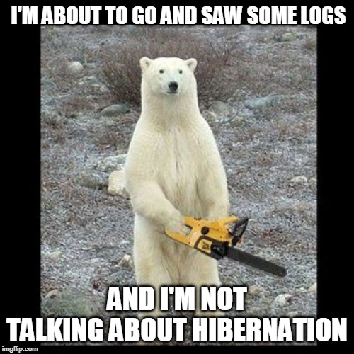 Chainsaw Bear Meme |  I'M ABOUT TO GO AND SAW SOME LOGS; AND I'M NOT TALKING ABOUT HIBERNATION | image tagged in memes,chainsaw bear | made w/ Imgflip meme maker
