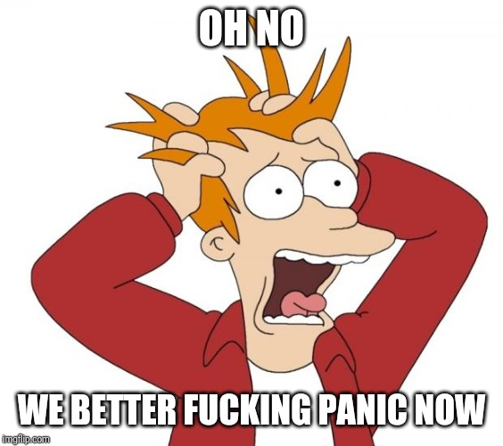 Panic | OH NO WE BETTER F**KING PANIC NOW | image tagged in panic | made w/ Imgflip meme maker