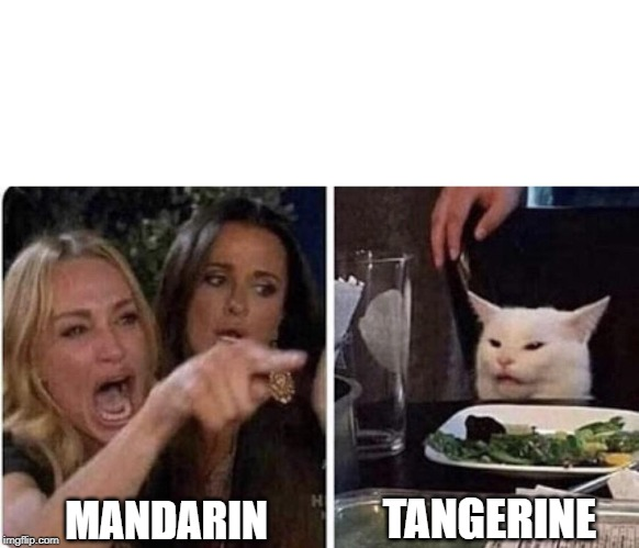 Angry Woman and Cat |  TANGERINE; MANDARIN | image tagged in angry woman and cat | made w/ Imgflip meme maker