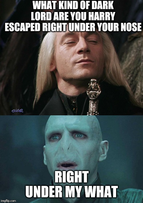 WHAT KIND OF DARK LORD ARE YOU HARRY ESCAPED RIGHT UNDER YOUR NOSE; RIGHT UNDER MY WHAT | image tagged in voldemort,lucius malfoy | made w/ Imgflip meme maker