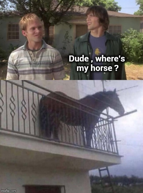 Too many Remakes and Sequels | Dude , where's         my horse ? | image tagged in hollywood,here we go again,dude wheres my car,do it,over it | made w/ Imgflip meme maker