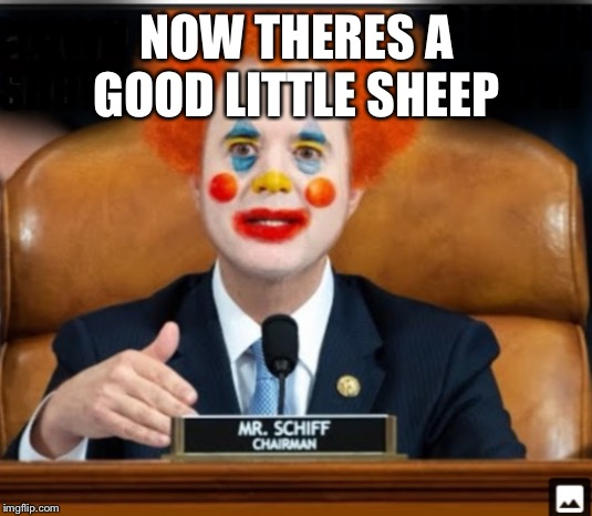 Insane Schiffty Clownshit | NOW THERES A GOOD LITTLE SHEEP | image tagged in insane schiffty clownshit | made w/ Imgflip meme maker