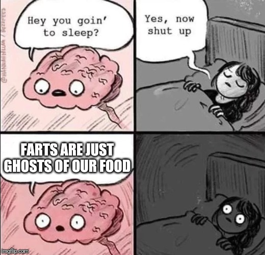 waking up brain | FARTS ARE JUST GHOSTS OF OUR FOOD | image tagged in waking up brain | made w/ Imgflip meme maker
