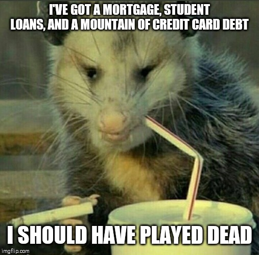 I'VE GOT A MORTGAGE, STUDENT LOANS, AND A MOUNTAIN OF CREDIT CARD DEBT; I SHOULD HAVE PLAYED DEAD | image tagged in memes,possum | made w/ Imgflip meme maker