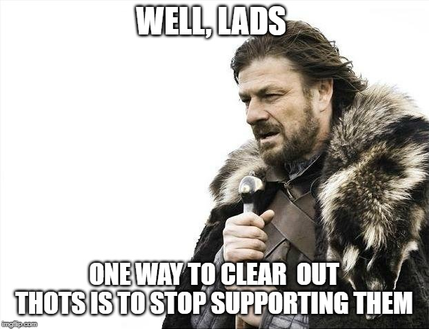 Brace Yourselves X is Coming Meme | WELL, LADS ONE WAY TO CLEAR  OUT THOTS IS TO STOP SUPPORTING THEM | image tagged in memes,brace yourselves x is coming | made w/ Imgflip meme maker