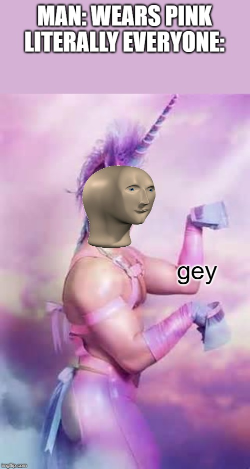 Gay Unicorn |  MAN: WEARS PINK LITERALLY EVERYONE:; gey | image tagged in gay unicorn | made w/ Imgflip meme maker