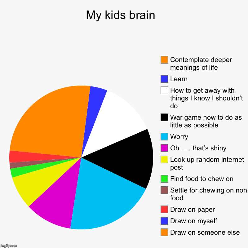 My kids brain  | Draw on someone else , Draw on myself , Draw on paper , Settle for chewing on non food , Find food to chew on , Look up ran | image tagged in charts,pie charts | made w/ Imgflip chart maker