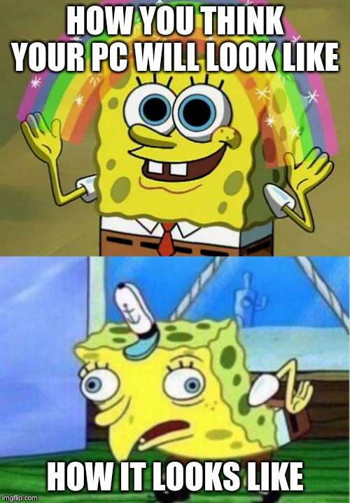 HOW YOU THINK YOUR PC WILL LOOK LIKE; HOW IT LOOKS LIKE | image tagged in memes,imagination spongebob,mocking spongebob | made w/ Imgflip meme maker