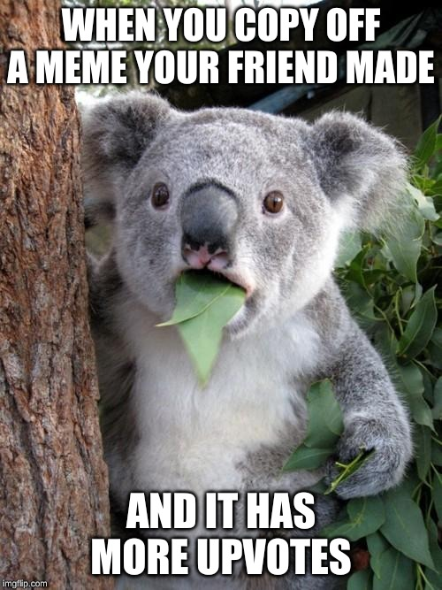 Surprised Koala Meme |  WHEN YOU COPY OFF A MEME YOUR FRIEND MADE; AND IT HAS MORE UPVOTES | image tagged in memes,surprised koala | made w/ Imgflip meme maker