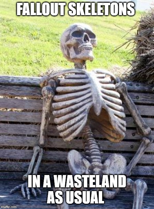 Waiting Skeleton | FALLOUT SKELETONS IN A WASTELAND AS USUAL | image tagged in memes,waiting skeleton | made w/ Imgflip meme maker