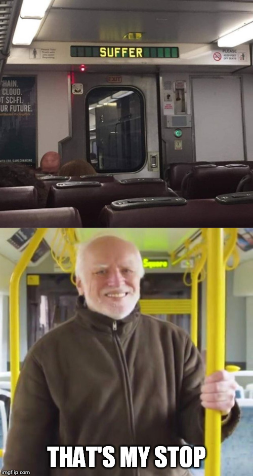 All aboard the pain train! | THAT'S MY STOP | image tagged in hide the pain harold,suffer,stop | made w/ Imgflip meme maker