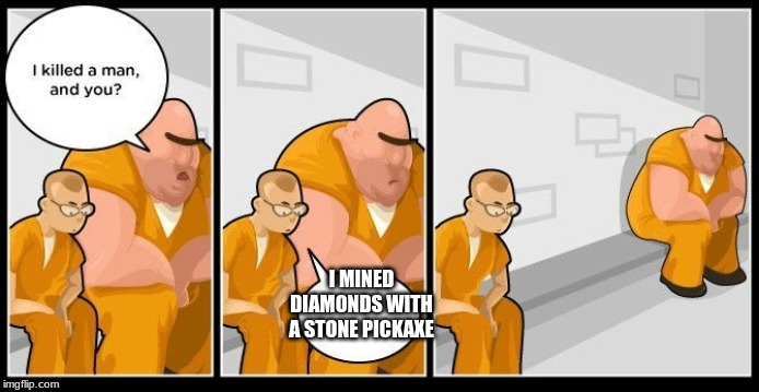 I MINED DIAMONDS WITH A STONE PICKAXE | image tagged in bruh moment | made w/ Imgflip meme maker
