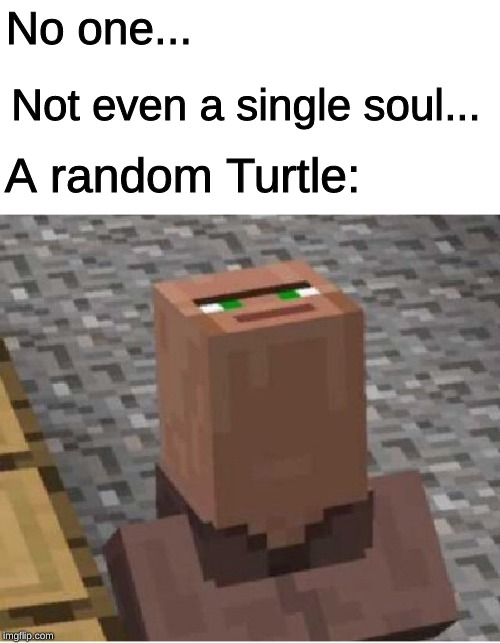 Minecraft Villager Looking Up |  No one... Not even a single soul... A random Turtle: | image tagged in minecraft villager looking up | made w/ Imgflip meme maker